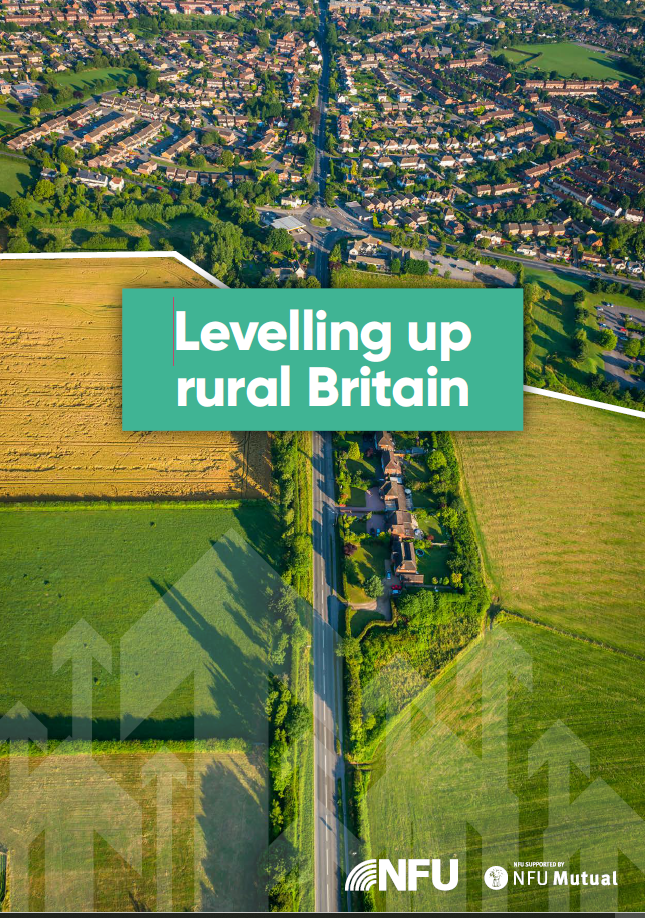 Levelling Up rural Britain